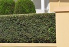 Adamstown Heights Privacy screens 30