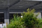 Adamstown Heights Wire fencing 20